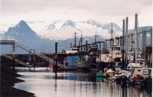 Homer Alaska-Marina